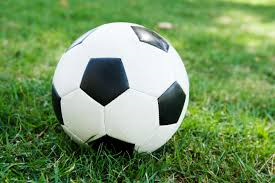2019 Fall Soccer League