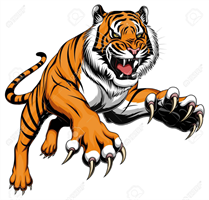 Tiger Town Cage Classic