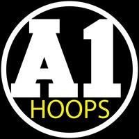 A1 Hoops Basketball