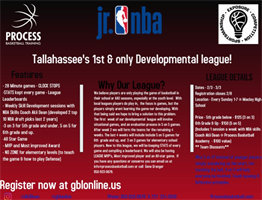 Spring Process Development League